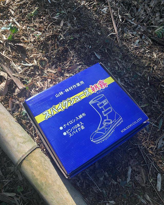 足袋を新調#タケノコ#たけのこ#とくしま#徳島#山#竹林#たけのこ姫#筍#足袋#朝霧#阿波たけのこ農園 #筍姫