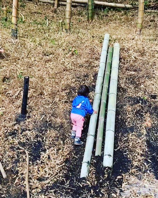 竹やぶ遊び 竹のすべり台