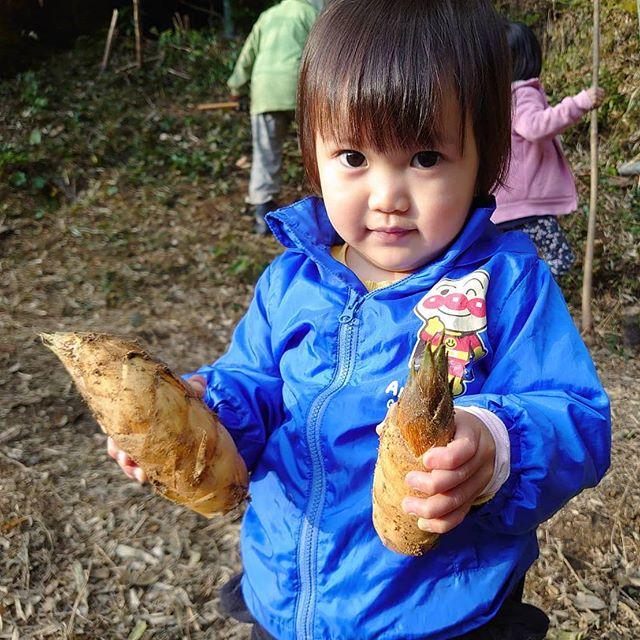たけのこ うちがみつけたんやで!! #たけのこ #筍 #タケノコ #竹の子 #bumbershoot #徳島 #とくしま #tokushima #awa #阿波 #筍姫 #takenokohime #筍姫の里