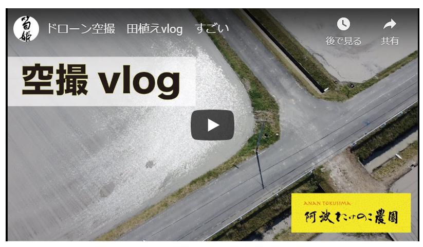 2020年の米作り 田植えvlog