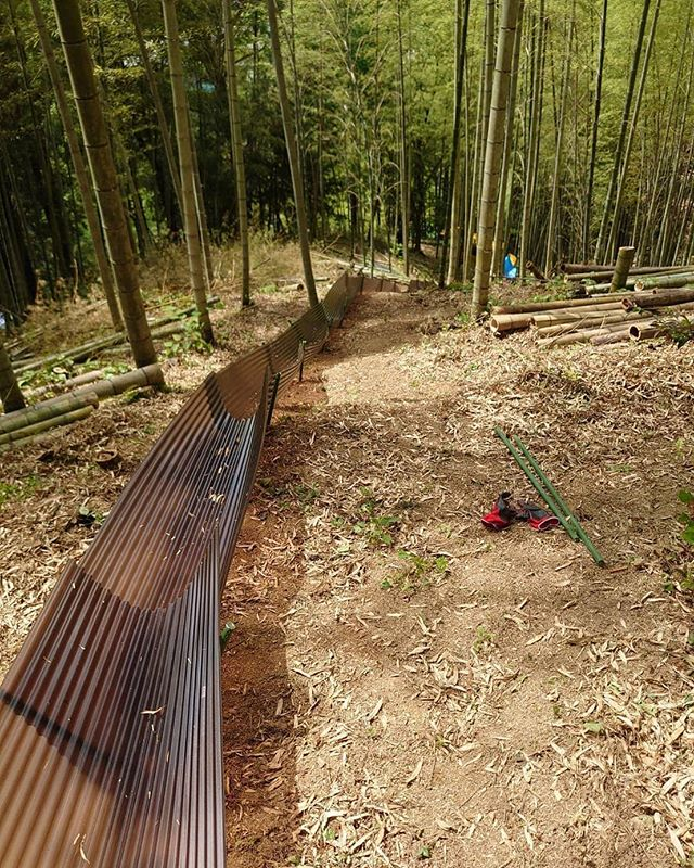竹やぶにタケノコ用のすべり台