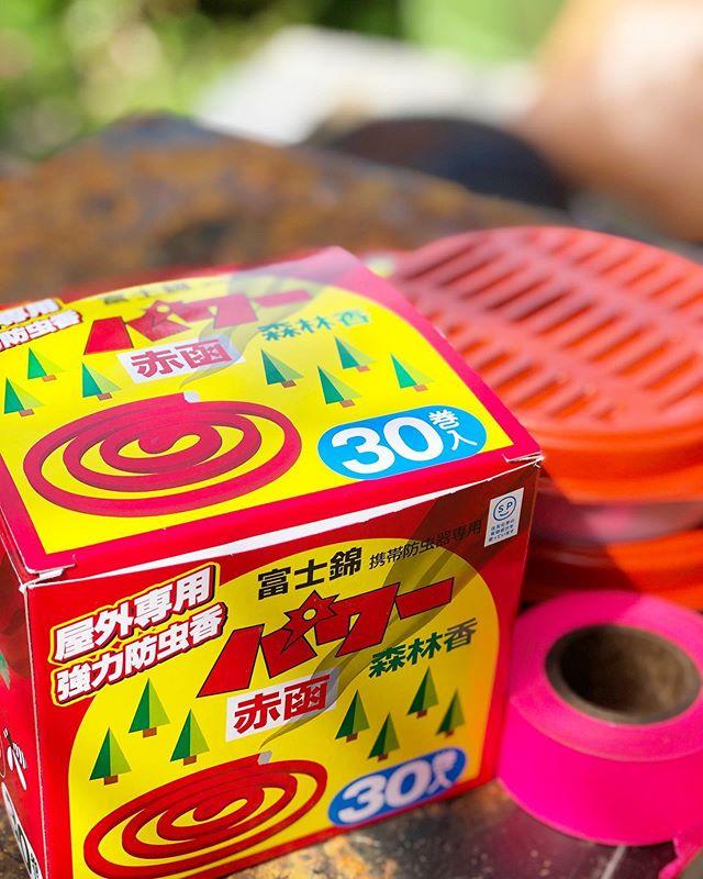 暑い季節の必需品「森林香」