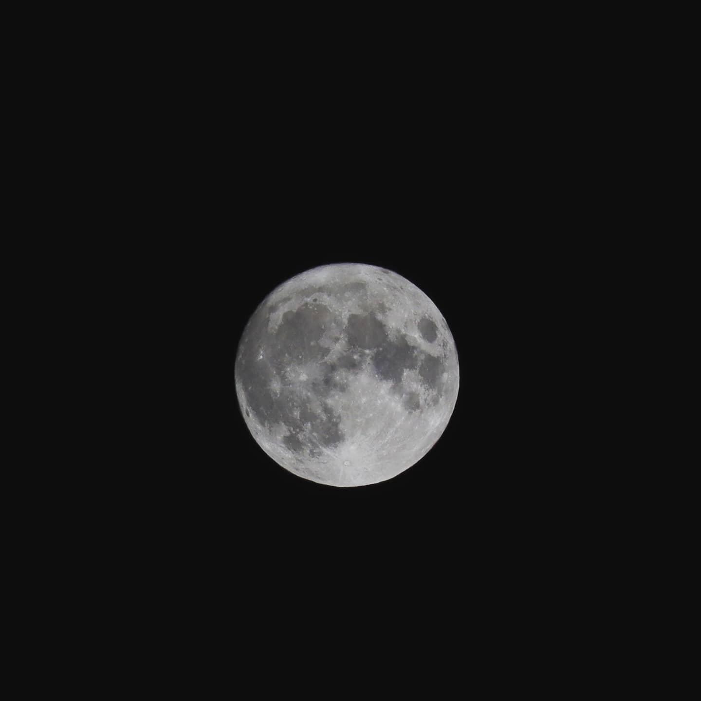 中秋の名月秋の夜長の月見と焚き火秋虫のBGMも含めて癒しのひとときです️最高#満月 #焚き火 #阿波たけのこ農園