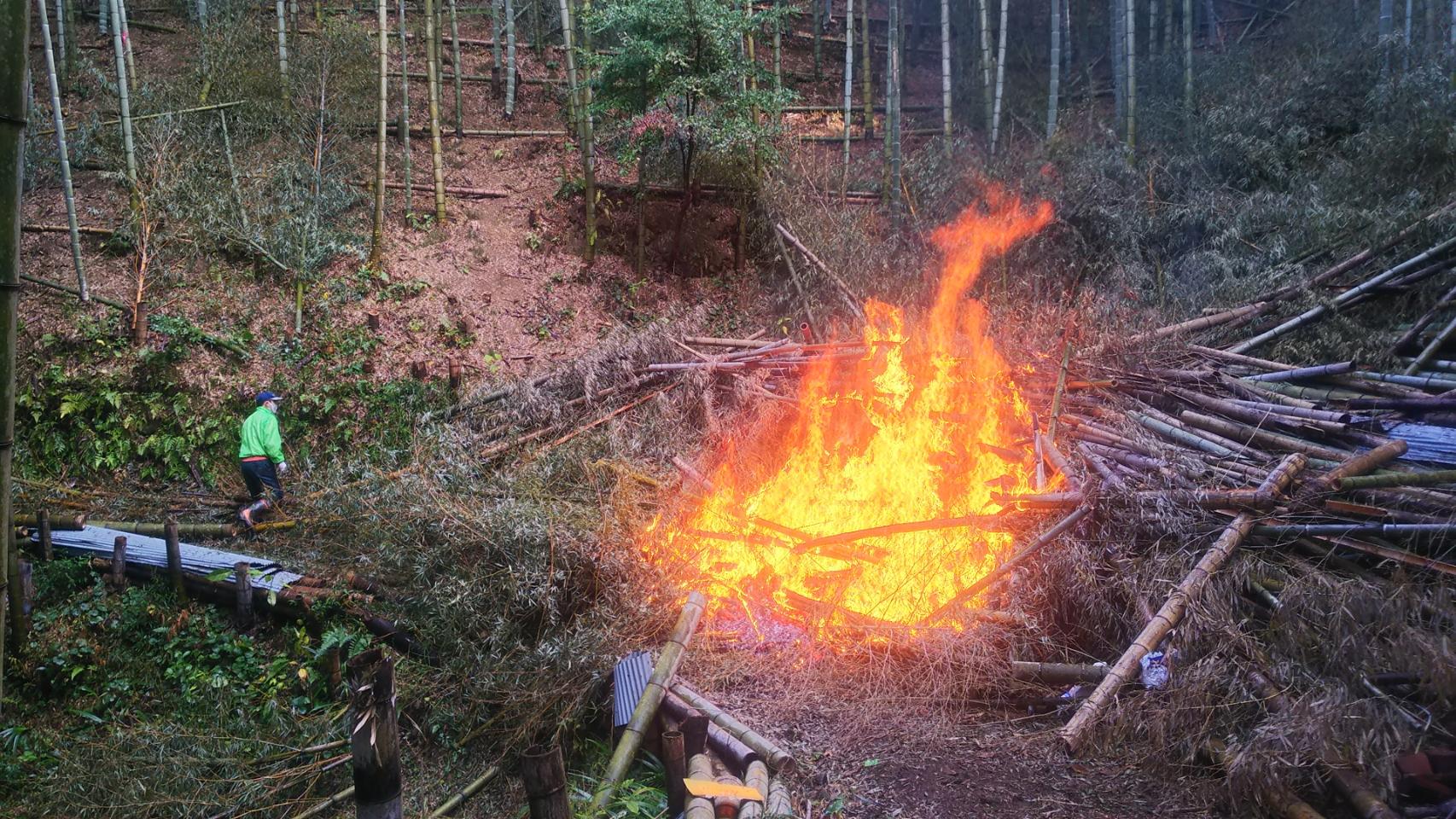 間伐した竹を燃やして竹林をきれいに整備!