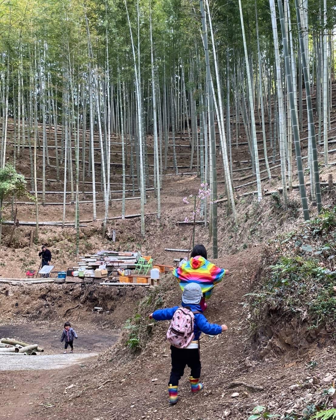 探検隊出動竹やぶにはワクワクがたくさん️#里山 #竹林 #竹 #たけのこ #竹やぶ #探検隊 #ワクワク #阿波たけのこ農園 #筍姫