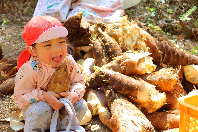 たけのこひめタケノコいっぱいひと休みひと休み️#たけのこ #姫 #筍姫 #かわいい #たけのこ販売#たけのこ消費 #春 #阿波たけのこ農園 #徳島